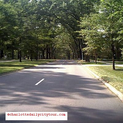 Tree-Lined Streets Myers Park - QCT Charlotte Daily City Tour